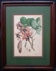 esbeck-framed
