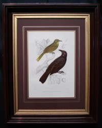 deurville-framed-2-bird-900-x-720