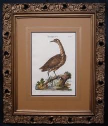 mayer-framed-900-x-775