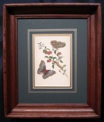 miriam-framed-1-900-x-766