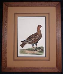 pennant-framed-900-x-761