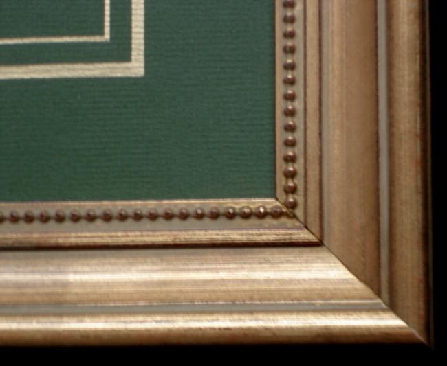 """Curtis, William (1746-1799) """"Iris Pallida"""" (Pale Flag)"""