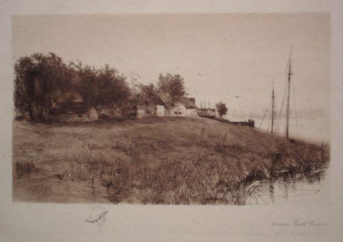 Along the Shoreline