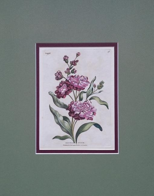 Bowles, Carington (1724-1793)