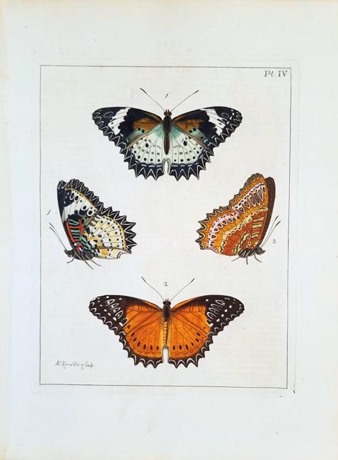Drury, Dru (1725-1804) Illustrations of Natural History (1st Edition)