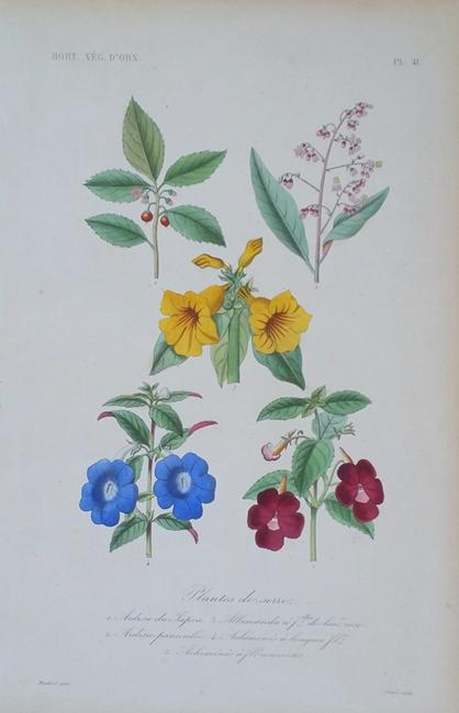 Le Regne Vegetal (1864-1871)