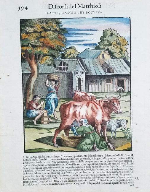 Mattioli, Pietro Andrea (1500-1577)