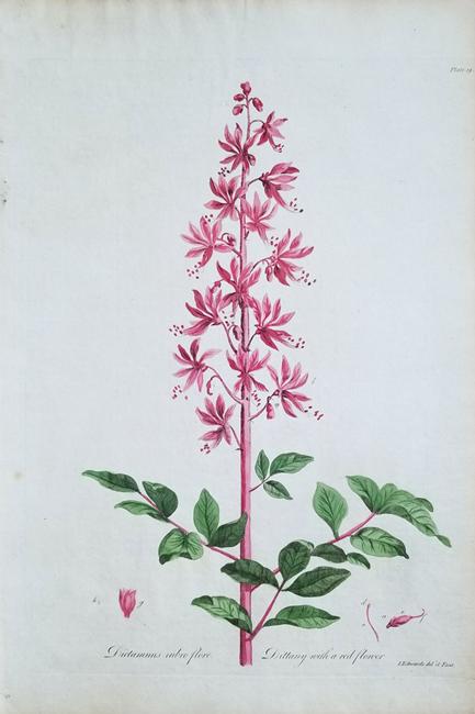 Edwards, John (1742-1815)